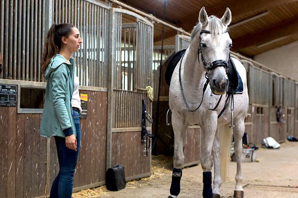 Foto zur Berliner Sparkasse: Abgebildet ist eine Trainerin im Stall mit einem weißen Pferd.